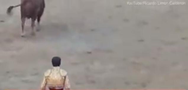 Acı İçinde Yerde Kaldı! Kızgın Boğa Matadorun Kafa Derisini Yüzdü