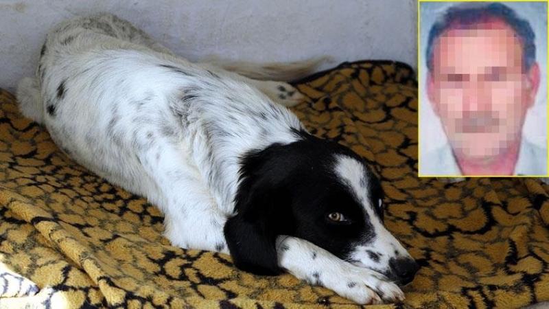 Antalya'da Mide Bulandıran Olay! 52 Yaşındaki Adam Çocuk Parkında Köpeğe Tecavüz Etti
