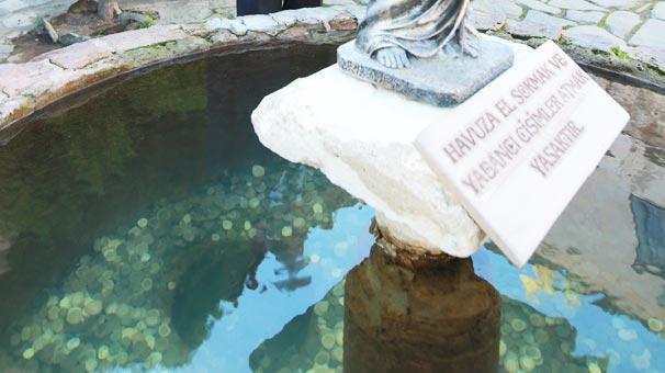 Dilek Havuzuna Atılan Paraların Akıbeti Merak Ediliyor