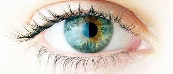 Göz Sağlığının Vazgeçilmezi Lutein
