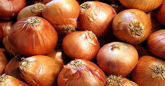 Rekor Fiyatlara Ulaşan Soğanın Fiyatı Önümüzdeki Hafta Ucuzlayacak