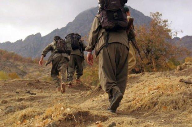 Şırnak Valiliği Açıkladı: 1'i Kadın 5 Terörist Yakalandı